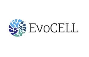 EVOCell_Thumbnail_750x480